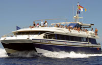 Lady Shelley Boat Trips in Tenerife