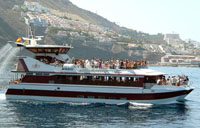 Royal Delfin Boat Trips in Tenerife