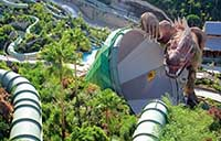 The Dragon at Siam Park in Tenerife